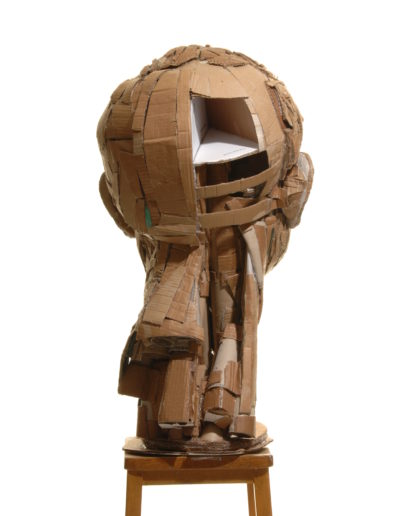 cardboard self - James Lake